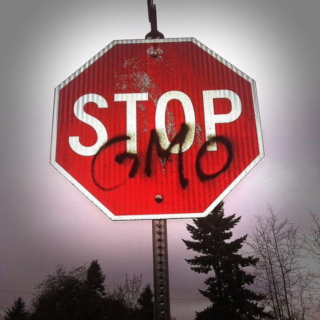 GMO needs to be stopped