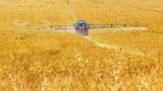 Spraying of the fields