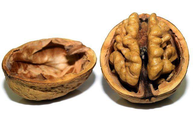 Walnuts are brain food