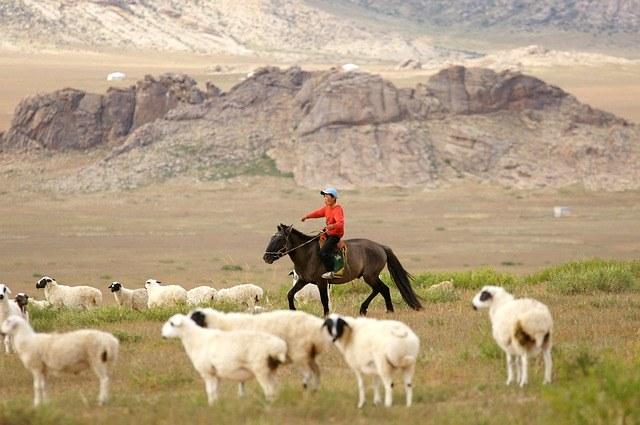 Mongolian on horseback