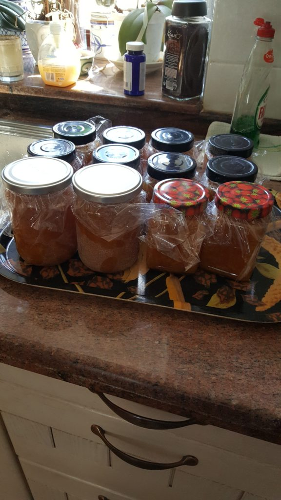 glasses filled with orange marmalade