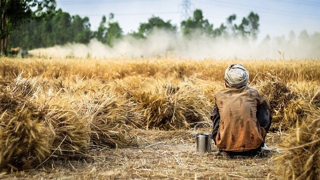 Farmer spraying crop