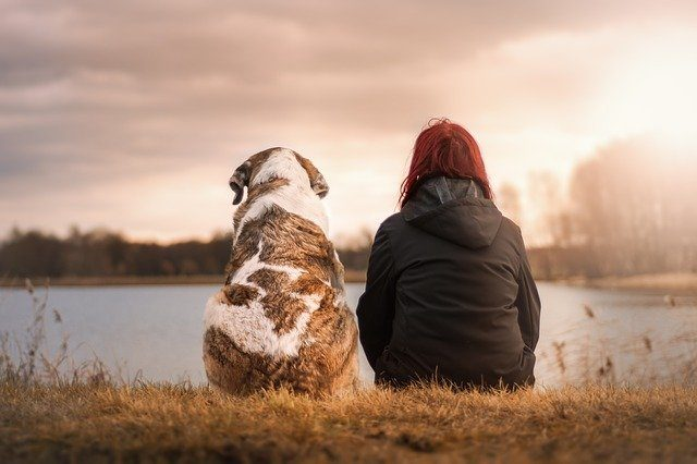 Big Dog and Woman sitting side by side