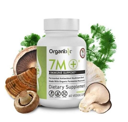 Immune Boosting Fermented Mushroom Supplement
